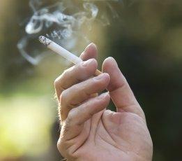 Wissenschaftlich bestätigt: Rauchen bzw. Nikotin hat direkten Einfluß auf den Appetit